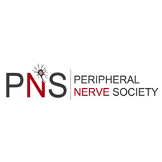 PNS small